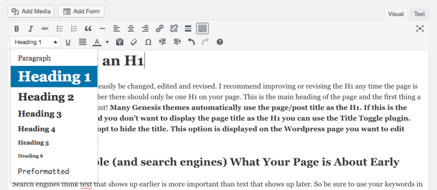 Where To Find Your Heading 1 In WordPress
